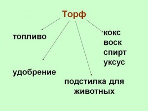 Torf 2